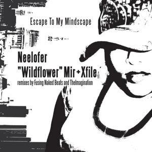 "Neelofer ""Wildflower"" Mir + Xfile 歌手頭像"