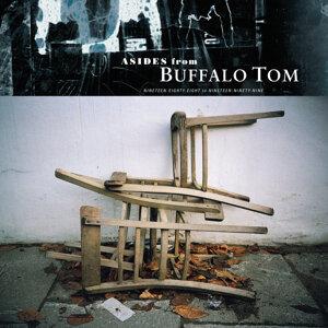Buffalo tom (湯姆水牛) 歌手頭像