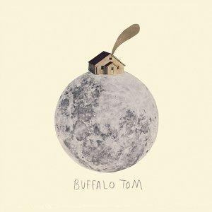 Buffalo tom (湯姆水牛)