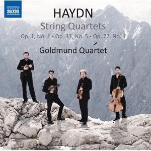 Goldmund Quartet 歌手頭像