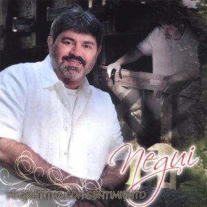 Negui 歌手頭像