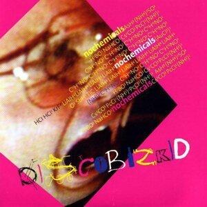 Disco BizKid 歌手頭像