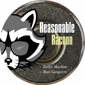 Reasonable Racoon 歌手頭像