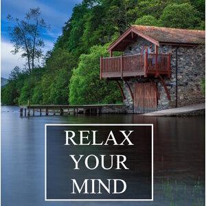 Mindfulness Meditation Music Spa Maestro & Mindulness Music 歌手頭像