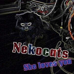 Nekocats 歌手頭像