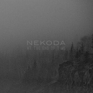 Nekoda 歌手頭像