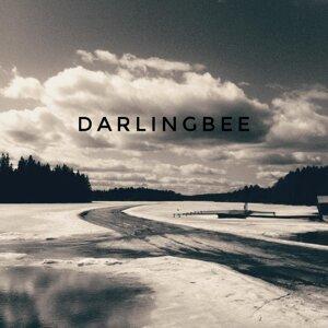 Darlingbee 歌手頭像