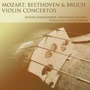 Wiener Symphoniker, Ferdinand Leitner, Wolfgang Schneiderhan, Bamberger Symphoniker 歌手頭像