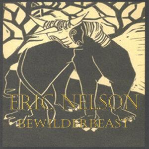 Eric Nelson 歌手頭像