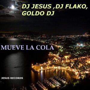 Dj Jesus, DJ Flako, Goldo DJ, Reggaeton DJ 歌手頭像