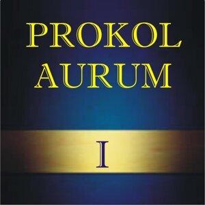 Prokol Aurum 歌手頭像
