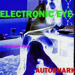 Electronic Eye 歌手頭像
