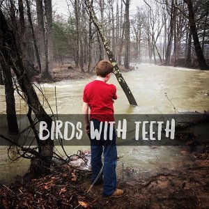 Birds with Teeth 歌手頭像