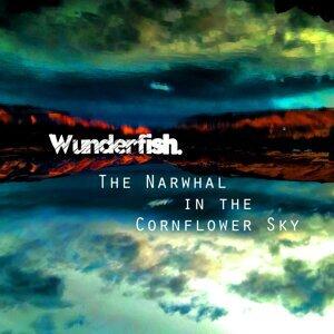 Wunderfish 歌手頭像