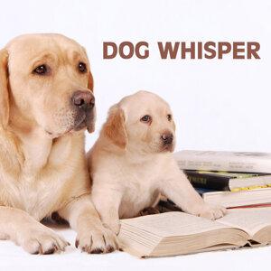 Dog Whisper 歌手頭像