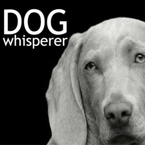 Dog Whisper