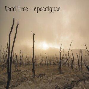 Dead Tree 歌手頭像