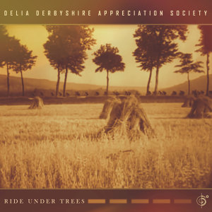 Delia Derbyshire Appreciation Society 歌手頭像