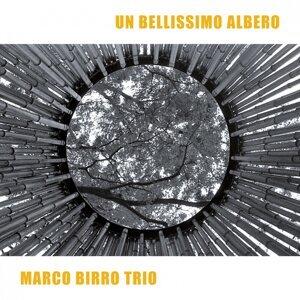 Marco Birro Trio 歌手頭像