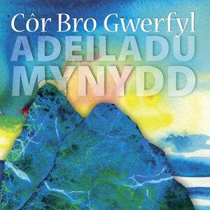 Cor Bro Gwerful Choir 歌手頭像