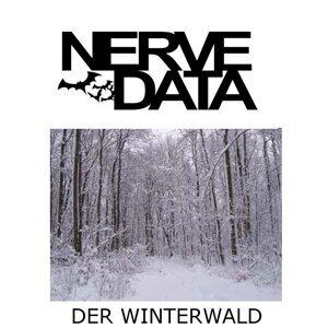 Nerve Data 歌手頭像