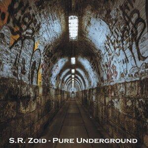 S. R. Zoid 歌手頭像