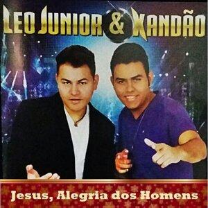 Leo Jr & Xandão Feat. Roniel & Rafael 歌手頭像