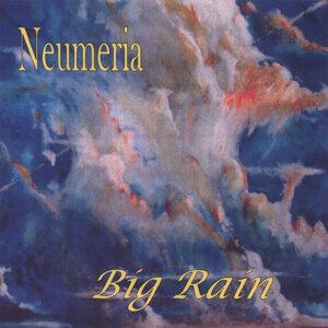 Neumeria 歌手頭像