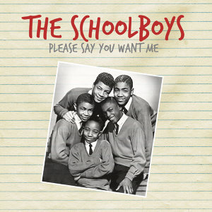 The Schoolboys 歌手頭像