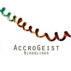 Accrogeist 歌手頭像