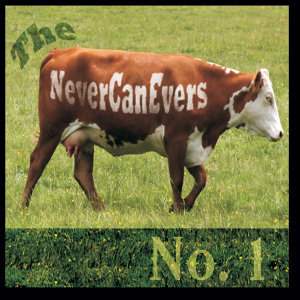 The Never Can Evers 歌手頭像