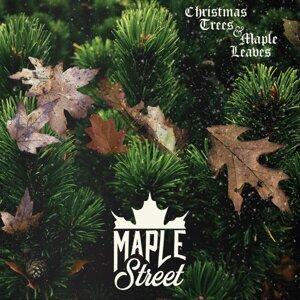 MapleStreet 歌手頭像
