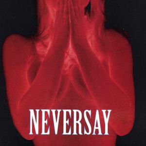 Neversay 歌手頭像