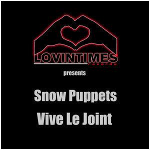 Snow Puppets 歌手頭像