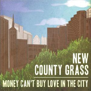 New County Grass 歌手頭像