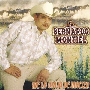 Bernardo Montiel 歌手頭像