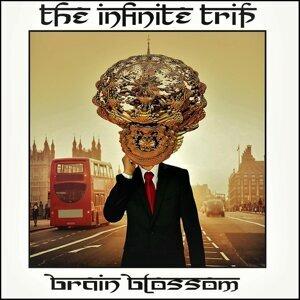The Infinite Trip 歌手頭像