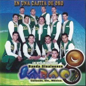 Banda Sinaloense Sarao 歌手頭像