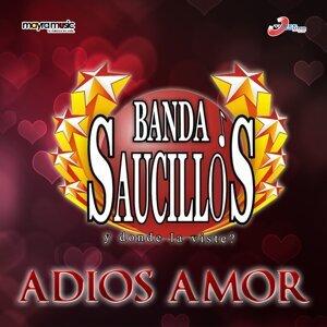Banda Saucillos 歌手頭像