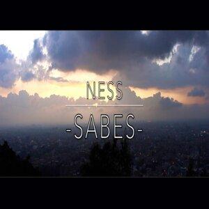 Ness 歌手頭像