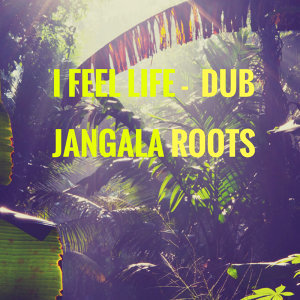 Jangala Roots 歌手頭像