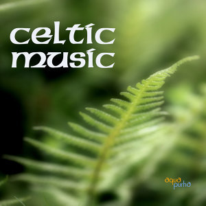 Celtic Music Band