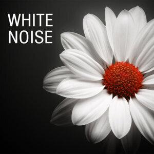 White Noise Masters 歌手頭像