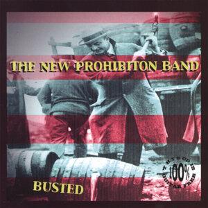 The New Prohibition Band 歌手頭像