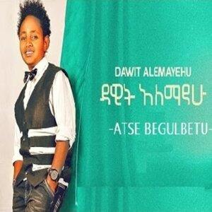 Dawit Alemayehu 歌手頭像