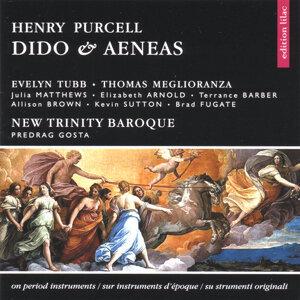 New Trinity Baroque, dir. Predrag Gosta / Tubb, Meglioranza etc 歌手頭像