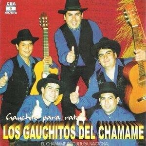 Los Gauchitos del Chamamé 歌手頭像