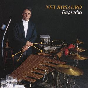 Ney Rosauro 歌手頭像
