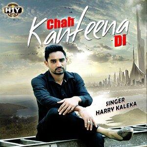 Harry Kaleka 歌手頭像