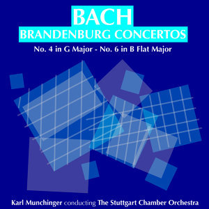 The Stuttgart Chamber Orchestra  and  Karl Munchinger 歌手頭像